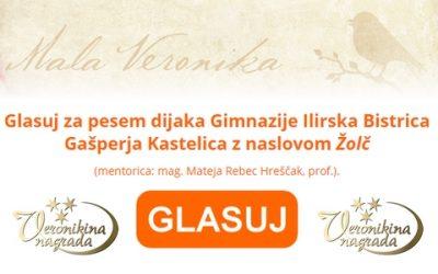 Nagradni pesniški natečaj za srednješolce Mala Veronika 2020 – GLASUJ ZA GAŠPERJA KASTELICA!